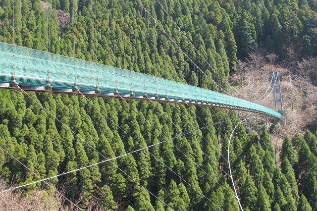 そまの大吊橋.jpg