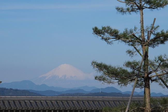 屋根越しに富士.jpg