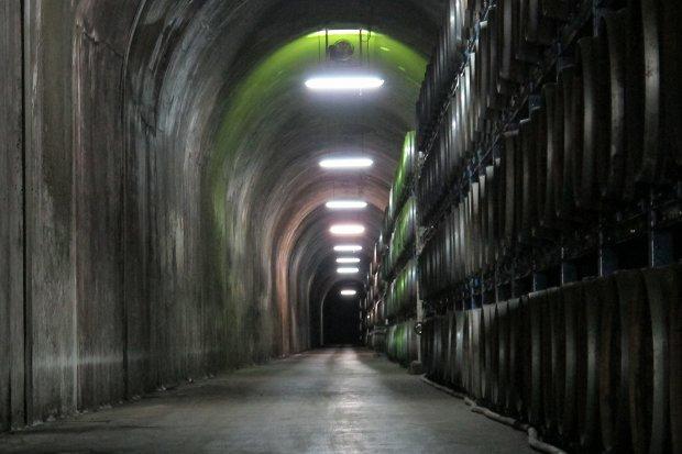 焼酎トンネル.jpg